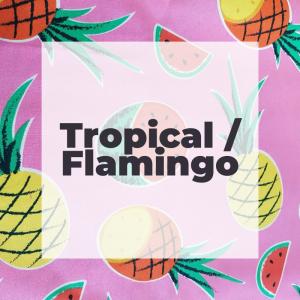 Tropical / Flamingo