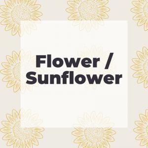 Flower / Sunflower