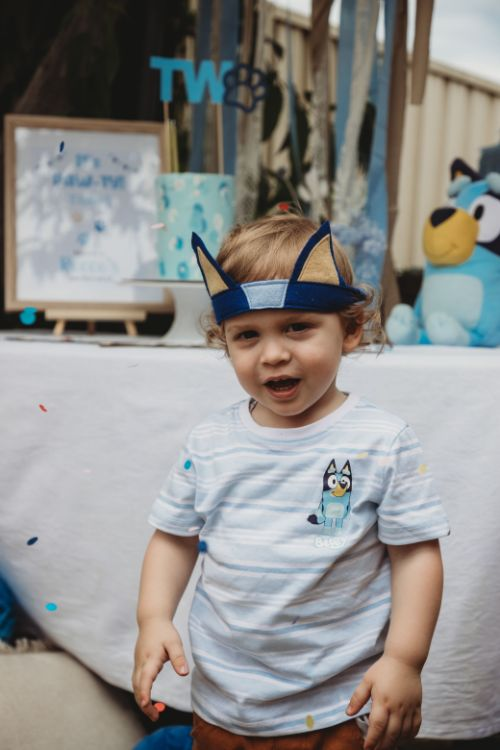 bluey inspired puppy party ideas