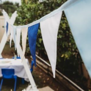 Blues large bunting